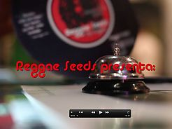 Reggae Seeds we present a video of our stay in Spannabis 2015.