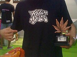 3rd prize BHO with Thousand Flowers by Reggae Seeds, Spannabis Málaga, 2015